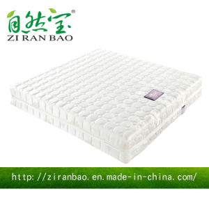 5 Star Hotel Trampolines Hotel Beds (ZRB-833)