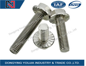 GB5787 Stainless Steel Hexagon Flange Bolt pictures & photos