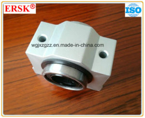 Short Slide Block with Linear Guide Rails (SCE8-SCE60) pictures & photos