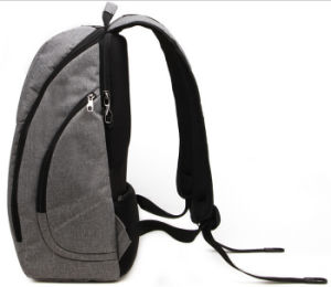 Backpack for 15.6 Inch Laptop with High Quality (SB6436) pictures & photos