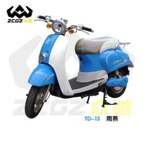 Professional Manufacturer Hot Sale 800W Brushless E Electric Motorcycle (TD-13)