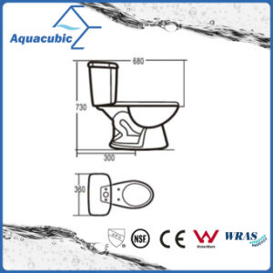 Siphonic Two Piece Single Flush Ceramic Toilet (ACT6860) pictures & photos