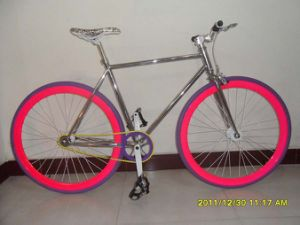 Hot Sale Fix Gear Bicycle Sr-MTB307 pictures & photos