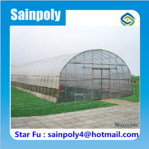Large Best Quality Tunnel Greenhouse for Flower pictures & photos