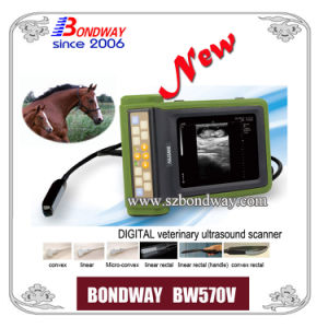 Portable Ultrasound Scanner for Animal Care, for Bovine Breeders, Farmers, Veterian Clinics pictures & photos