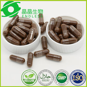 High Quality Herbal Supplement Anti Tumor Lingzhi Reishi Powder Capsule pictures & photos