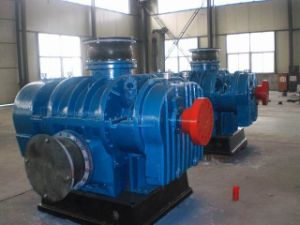 High Pressure Big Volume Roots Blower, Air Blower for Aeration