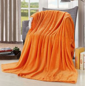 Coral Fleece Blanket in Solids pictures & photos