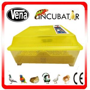 Hot Sale Full Automatic Mini Chicken Egg Incubator Neonate pictures & photos