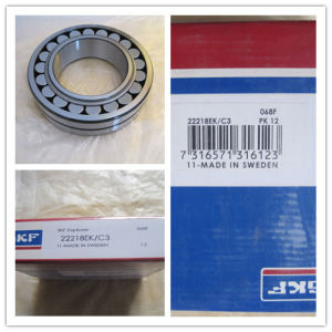Double Row Single Lock Ring Filled Cylindrical Roller Bearings SL185014 pictures & photos