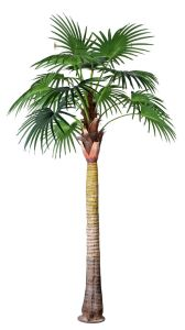 Artificial Plants and Flowers of Fan Palm 6m (GU-BJ-830-24-6M) pictures & photos