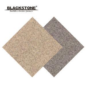 Foshan Rustic Floor Tile with Matt Surface 600X600 (6W001) pictures & photos