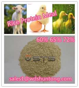 Rice Protein Meal Hot Sale pictures & photos