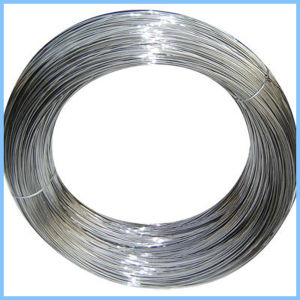 0.8mm 1.0mm 2.0mm Galvanized Binding Wire pictures & photos