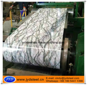 Printed Galvanized Steel Coils/PPGI pictures & photos