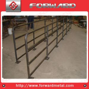 Metal Fence, Black Bitum or Hot Dipped Galvanized pictures & photos