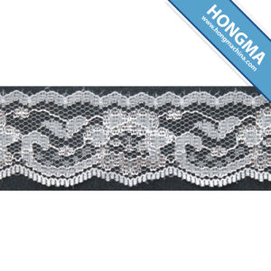 Nylonon Elastic Tricot Lace (1608-0010) pictures & photos