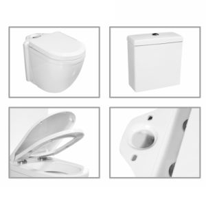 3/6L Washdown Two Piece Wc Bathroom Ceramic Toilet pictures & photos