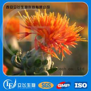 Factory Supply High Quality Safflower Extract