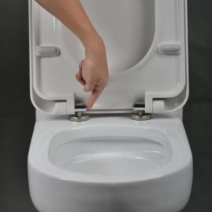 Duroplast Soft Close Square Western Toilet Seat pictures & photos