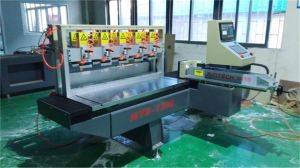 Made in China with CE/ISO/SGS Certificate High Performance Polishing Machine pictures & photos