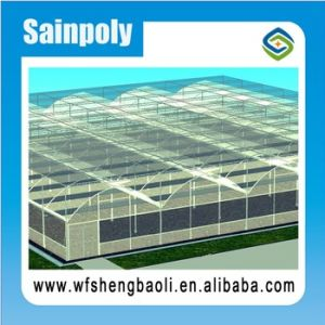 Easily Installed Agricultural/ Commercial Greenhouse for Vegetables Growing pictures & photos