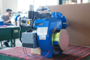 Factory Direct Sell LNG LPG Gas Burner in Boilers pictures & photos