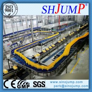 Customized Passionflower Juice Processing Line/Production Line pictures & photos