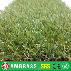 Worm Grass and Artificial Grass for Garden pictures & photos