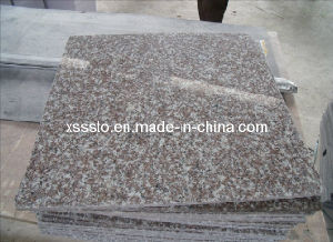 Cheap Prices G664 Granite Tiles/Slabs for Flooring pictures & photos