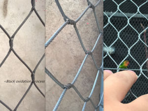 Stainless Steel Rope Mesh in Ferruled pictures & photos