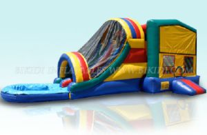 Bounce House Inflatables With Pool (B3049) pictures & photos