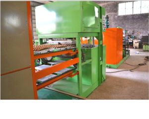 First-Class Paper Egg Tray Machine pictures & photos