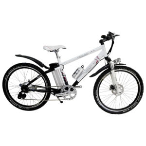 Economical Electric Bicycle (EB01-26)
