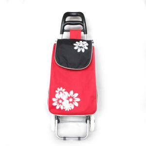 Foldable Shopping Trolley Bag pictures & photos