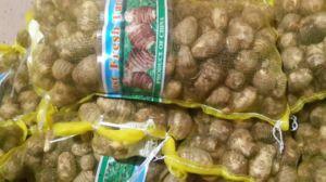 Fresh Taro Grade a (new crop) pictures & photos