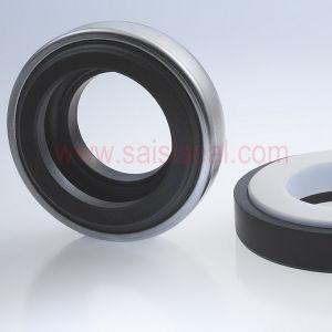 Burgmann BT-AR Replacement (Mechanical seals, Mechanical seal for pumps, Elastomer bellows seals) pictures & photos