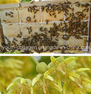 Honey, Top Linden Nest Honey King, Organic Food, Anticancer, No Pollution, No Heavy Metal, No Antibiotics, Nourish The Internal Organs, Prolong Life pictures & photos