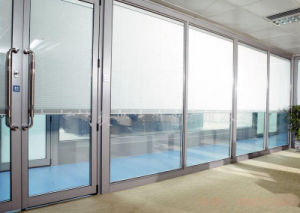Insulated Glass with Internal Blade pictures & photos