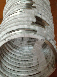 Ring Joint Gasket (Oval, Octagonal, RX, BX Type) pictures & photos