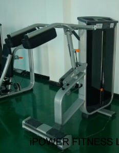 Standing Calf, Calf Machine, Stand Calf pictures & photos