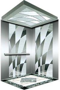 Vvvf Drive Gearless Motor Home Villa Elevator (RLS-121) pictures & photos
