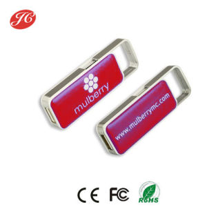 Plastic Pull-Push USB Flash Drives with Resin Dome Logo 4GB