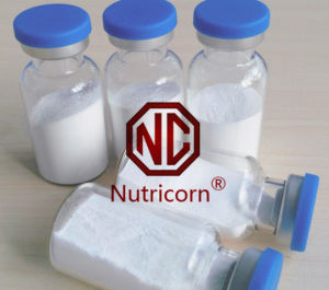 Hyaluronic Acid Powder Sodium Hyaluronate Ha Nutricorn pictures & photos