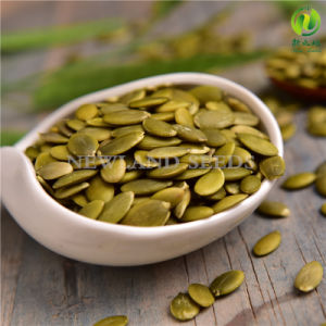 Shine Skin Pumpkin Seeds Kernels pictures & photos