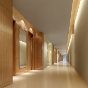 Fsc Quality Assured Plywood Composite Board for Hotel Project pictures & photos