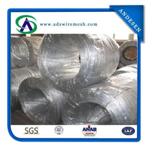 25kg/Roll, 20kg/Roll Hot Galvanzied Wire / Electro Glavainzed Iron Wire pictures & photos