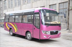 31 Seater Mini Bus Ls6729