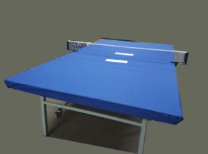 Table Throw/Table Cloth/Table Cover/Digital Printing Tablecloth pictures & photos