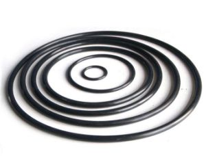 Oil Resistant NBR Rubber O- Ring pictures & photos